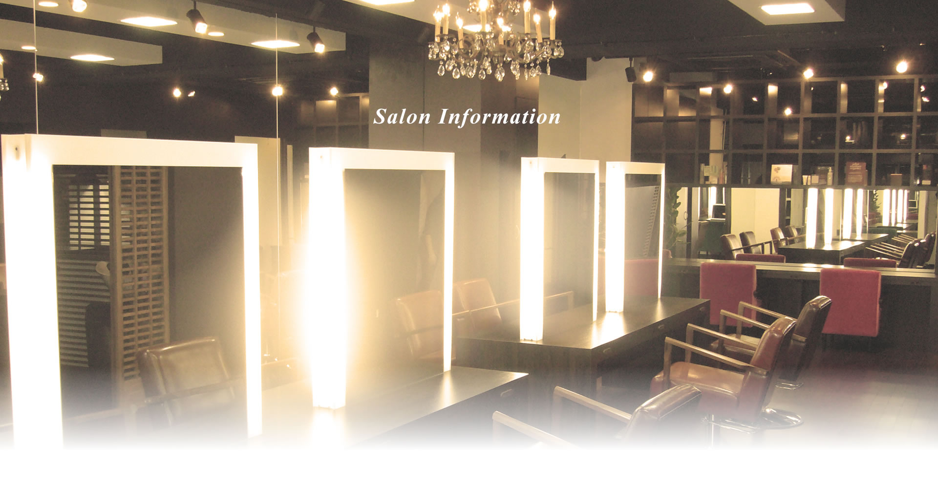 Salon Information